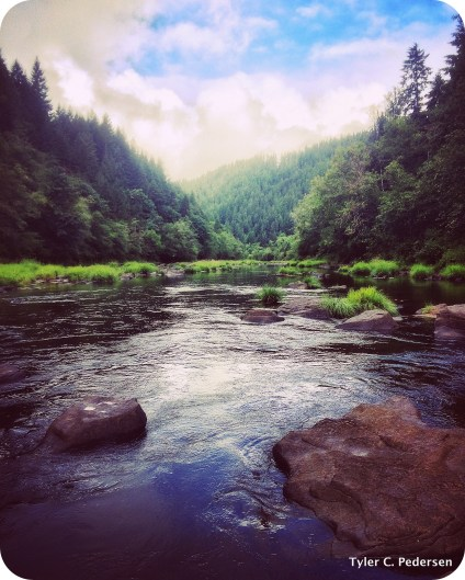 Majestic Siuslaw River