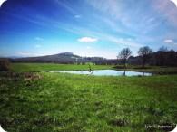 Finley National Wildlife Refuge