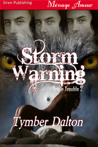 Cover for Storm Warning (Triple Trouble 2)
