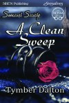 s-td-ss-acleansweep3