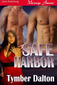 First Chapter: Safe Harbor (Suncoast Society)
