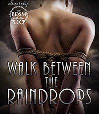 Available for pre-order: Walk Between the Raindrops (Suncoast Society 51, June & Scrye's book)