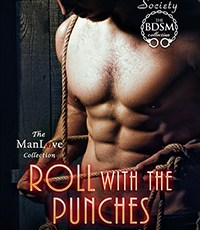 Roll With the Punches available for pre-order, new audiobook, LSFT series news, and more.