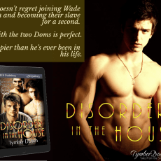 #ReleaseDay Now Available: Disorder in the House (Suncoast Society)
