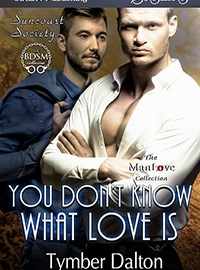 Release Day: You Don't Know What Love Is (Suncoast Society)