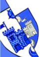 Tynecastle Badge