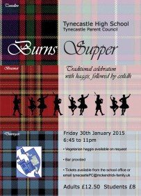 Burns poster THS 2015