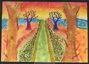 S2 landscapes