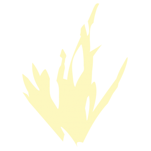 Grass_no_image