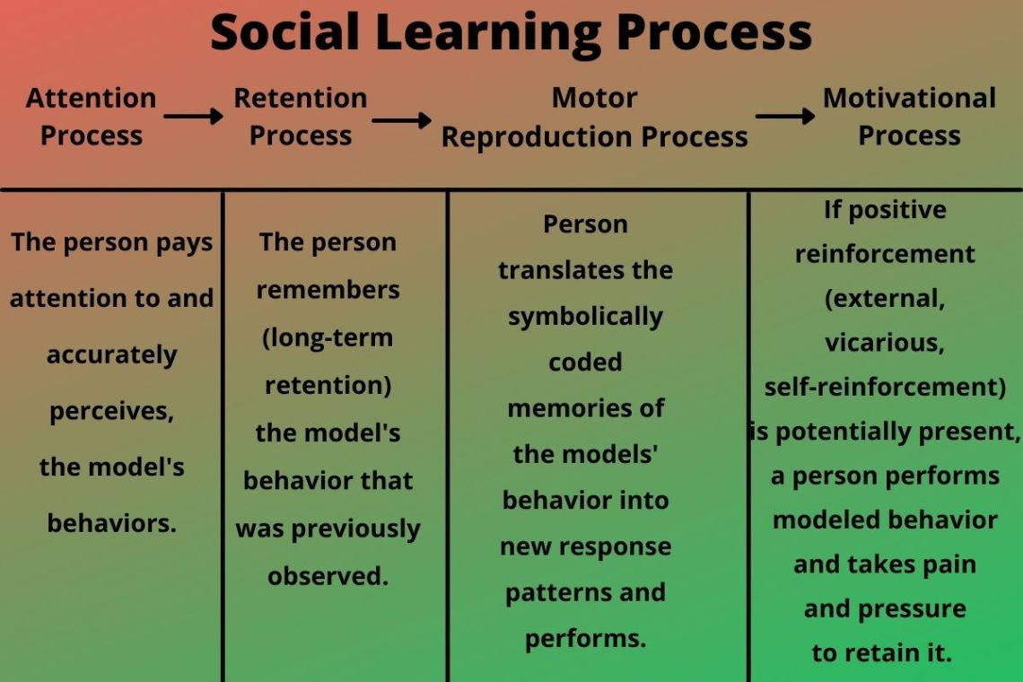 social learning process