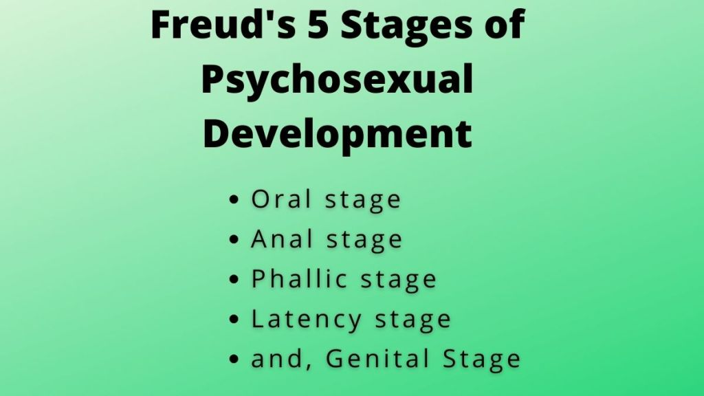 Freud's 5 Stages of Psychosexual Development