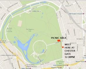 map, picnic, t1d