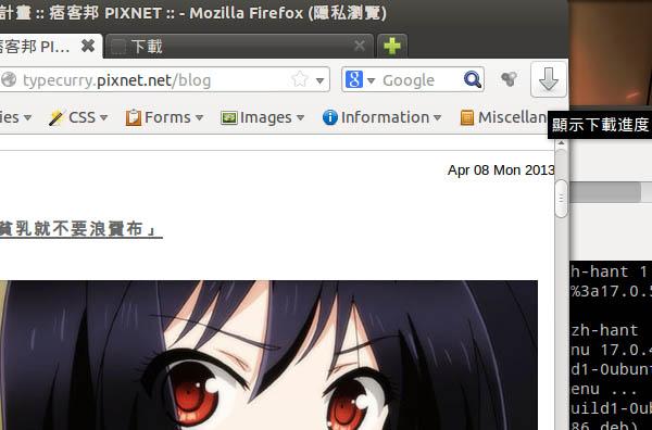 Firefox 20 Ubuntu