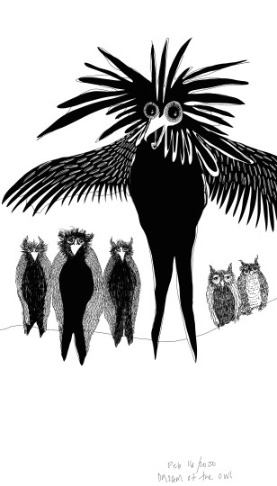 """""""Each of the shapeshifting owls transforms into a grand creature with flowing hair and protruding eyes"""""""
