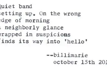 """""""The Farmer's Market"""" by Billimarie Lubiano Robinson - """"Quiet band / setting up. On the wrong / edge of morning / a neighborly glance / wrapped in suspicions / finds its way into 'hello'"""" (Typewriter Poetry)"""