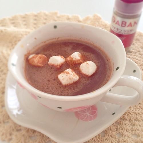 シナモンホットチョコレート