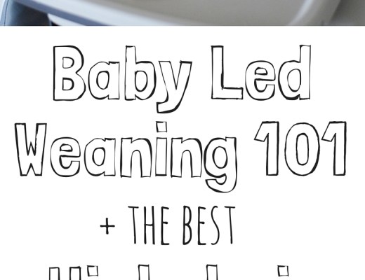 Baby Led Weaning 101