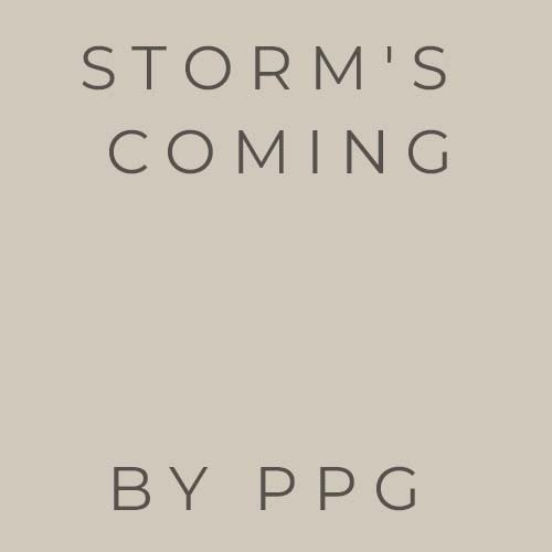 storm's coming by PPG Paints geige