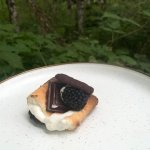 dark chocolate cookies salted caramel and black berry s'mores with toasted marshmallow