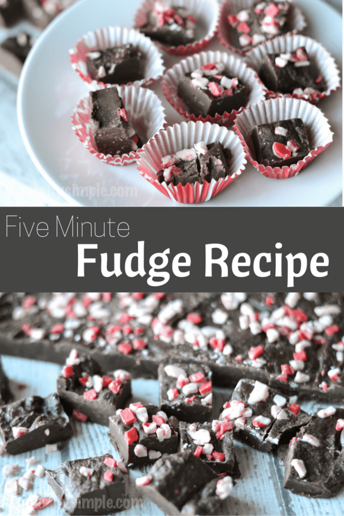 Using just three main ingredients, this five minute fudge recipe is a perfect treat for the holidays!