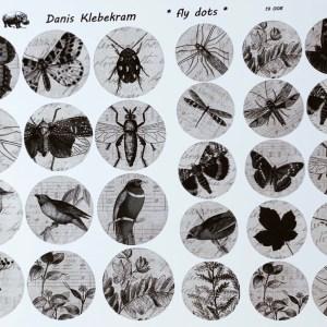 Insekten, BuJo, Libelle, Fliege