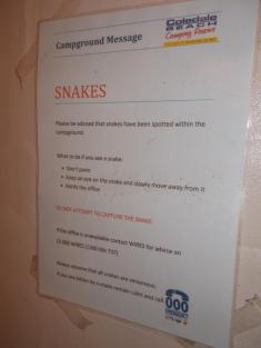 169. Snake warning at Coledale Beach campsite