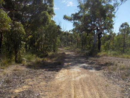 022. Track we rode in the Munmorah State Conservation Area