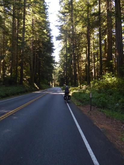 005. Redwood Highway south of Cresent City