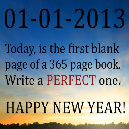 Tyrone-Smith-Happy-New-Year-2013-today-is-the-first-blank-page-of-a-365-page-book.-Write-a-perfect-one. copy