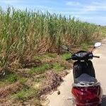 波照間島 レンタルバイク