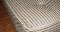 bed bug fecal spots at mattress corner