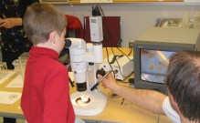 Hans Klompen with young visitor looking at mites under the microscope. 2006