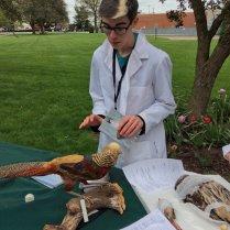 OSU undergraduate with tetrapods specimens at #MBDOH17