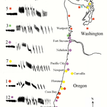 Song dialects of White-crowned Sparrows along the Pacific northwest coast