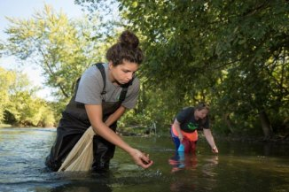 Jacqualyn Halmbacher collecting mussels