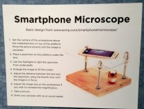 display for Smartphone miscroscope