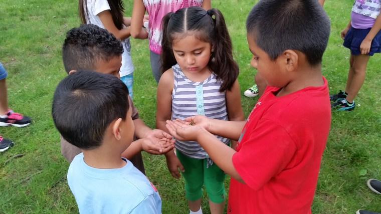 Children scope out a creature during one of Granados' nature programs (Photo courtesy of Ricardo Granados).