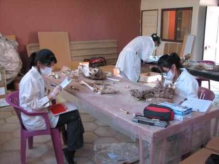 Rocío (right) analyzing human remains from a prehispanic cemetery in Quillagua, Chile (2009)