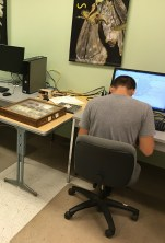 Zach working on data entry