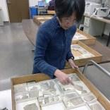 Jan at work