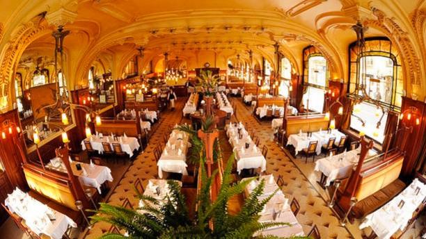 Brasserie Excelsior Nancy Restaurant 50 Rue Henri
