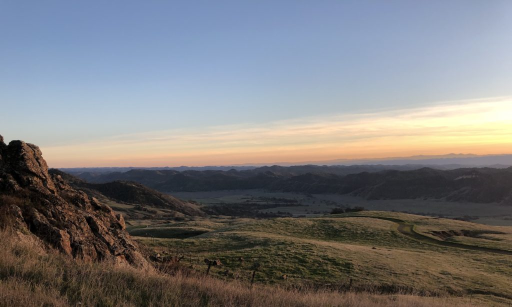 Cali Sunset LuciFit