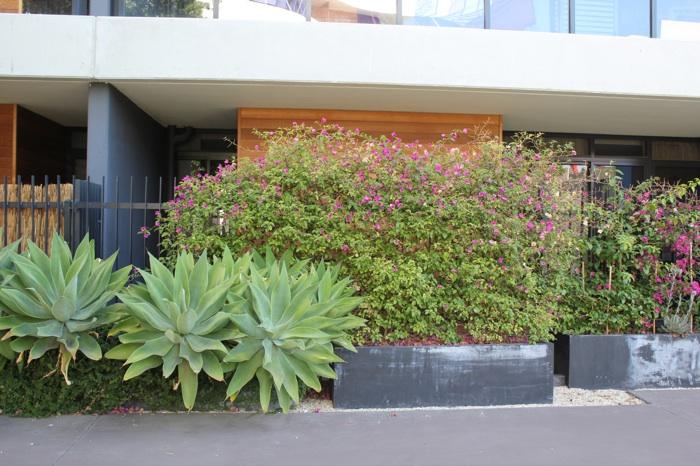 Балкончики на первом этаже всегда с различной растительностью