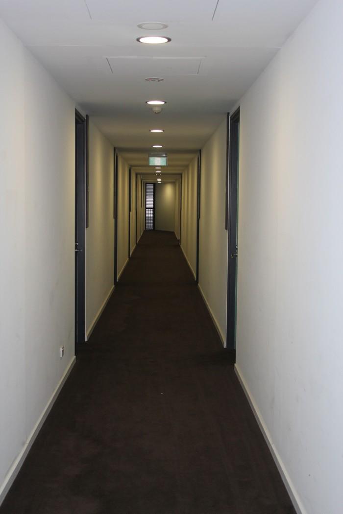 Коридоры на этажах, на полу ковролин