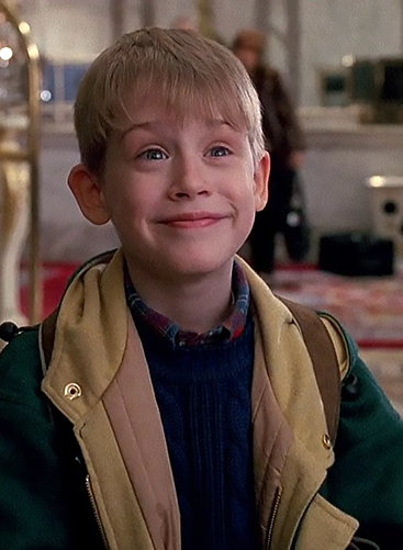 Image result for home alone hotel for sale new york