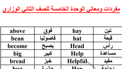 Photo of صف ثاني فصل ثاني مفردات الوحدة الخامسة لغة إنجليزية