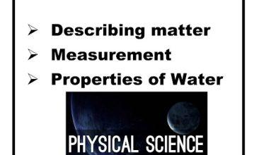 Photo of صف رابع فصل ثاني دليل علوم منهج محلول