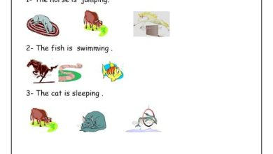 Photo of أوراق عمل الوحدة الخامسة لغة إنجليزية صف ثاني فصل ثاني