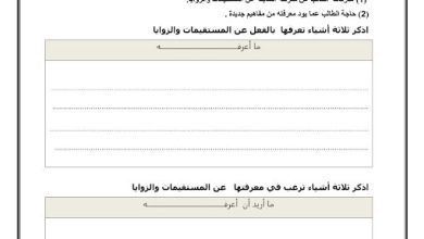 Photo of ورقة عمل المستقيمات رياضيات صف ثامن فصل ثاني