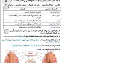 Photo of ورقة ملخص الجهاز الدوري أحياء صف تاسع متقدم فصل ثاني